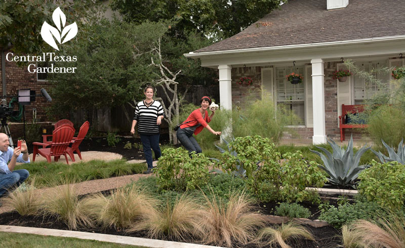 front yard makeover Central Texas Gardener