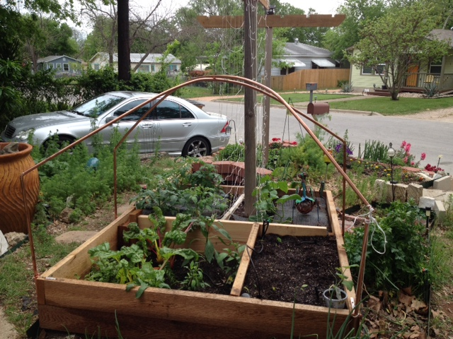 mary valente front yard vegetable garden - Backyard Vegetable Garden