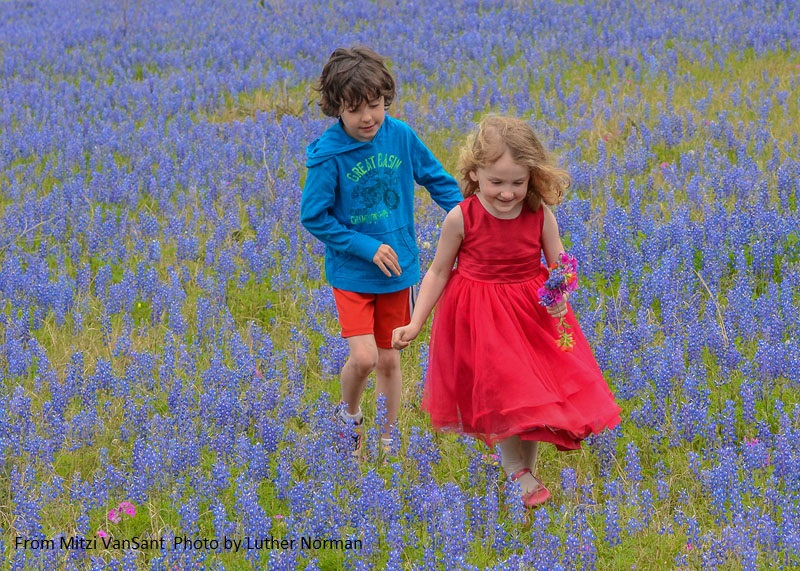 children in Texas bluebonnets Central Texas Gardener