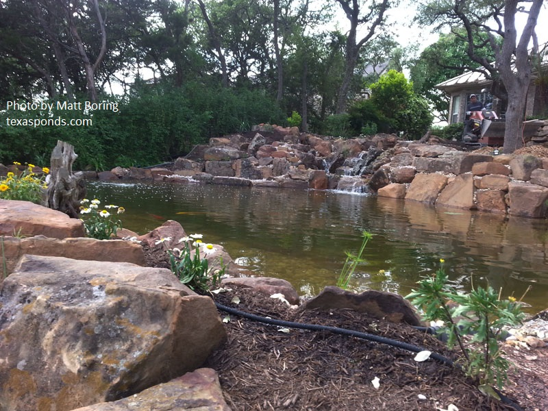 pond design by matt boring central texas Gardener
