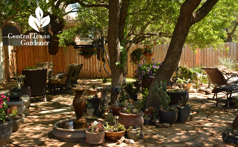 Pond and patios replace lawn Central Texas Gardener