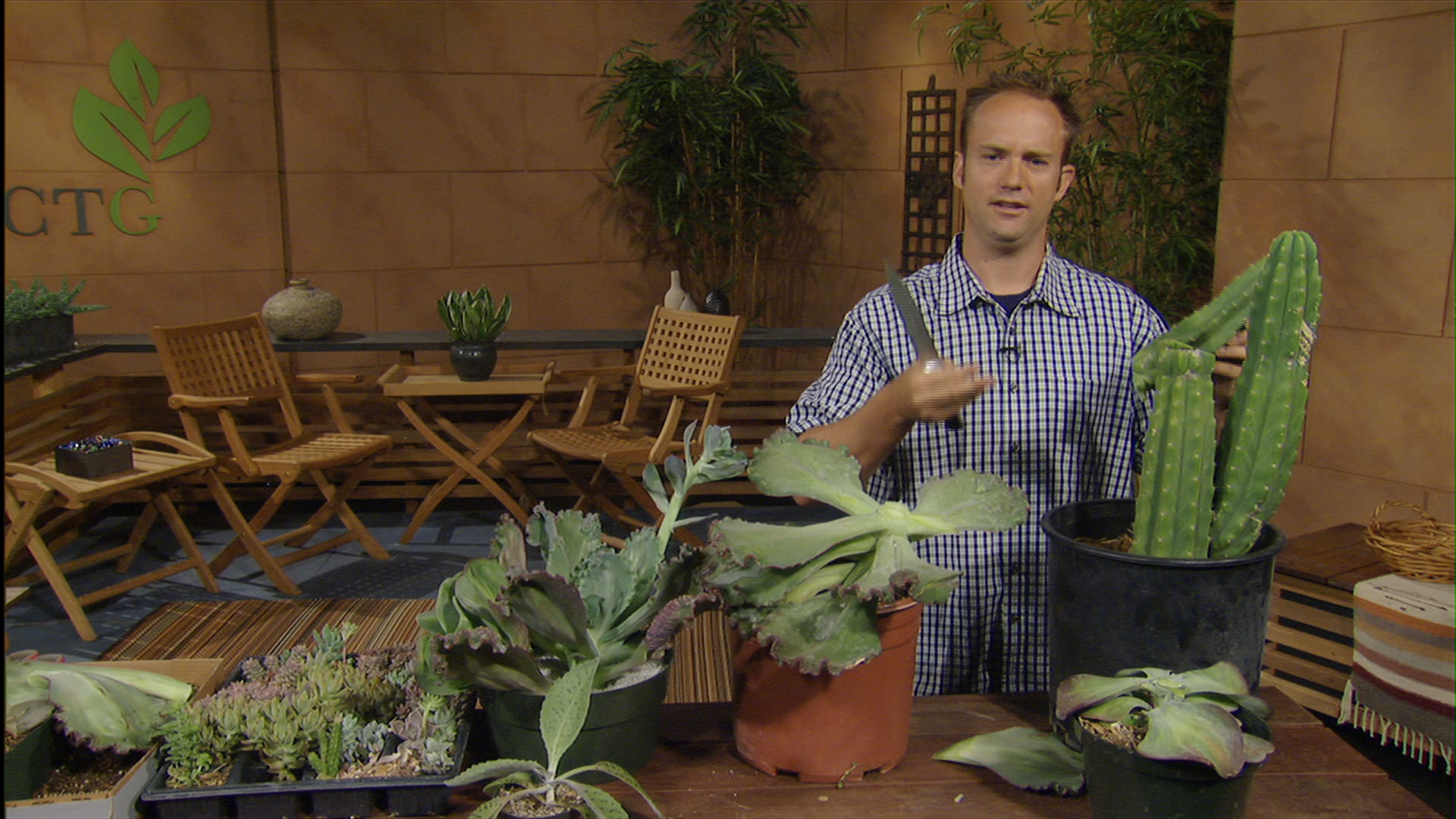 divide succulents leaf and behead with Eric Pedley
