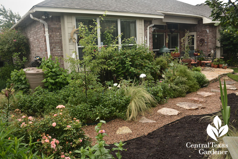 edible garden to cozy patio Central Texas Gardener