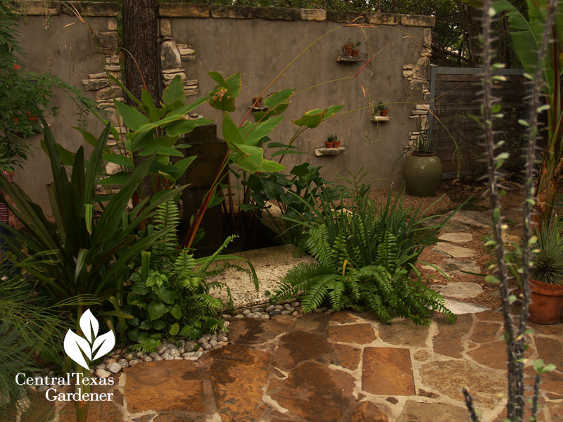 concrete patio privacy with embedded plant ledges Central Texas Gardener