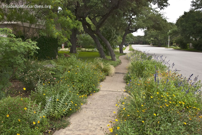 Inside Austin Gardens Tour 2015 - Gregory Thomas garden