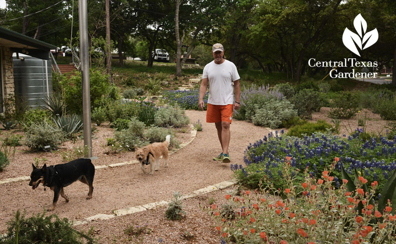 Robert Patterson Rollingwood City Hall Central Texas Gardener