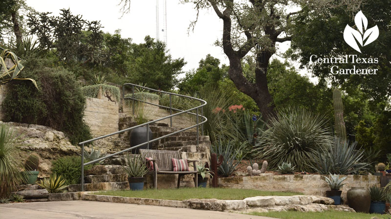 limestone staircase to upper patio Pavlat Central Texas Gardener