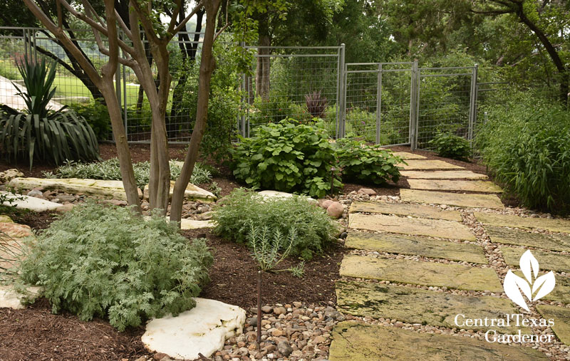 pathway stones connect to dry creek Central Texas Gardener