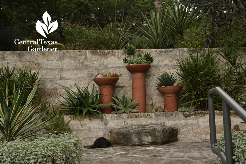 plant cylinders from concrete forms Central Texas Gardener Pavlat