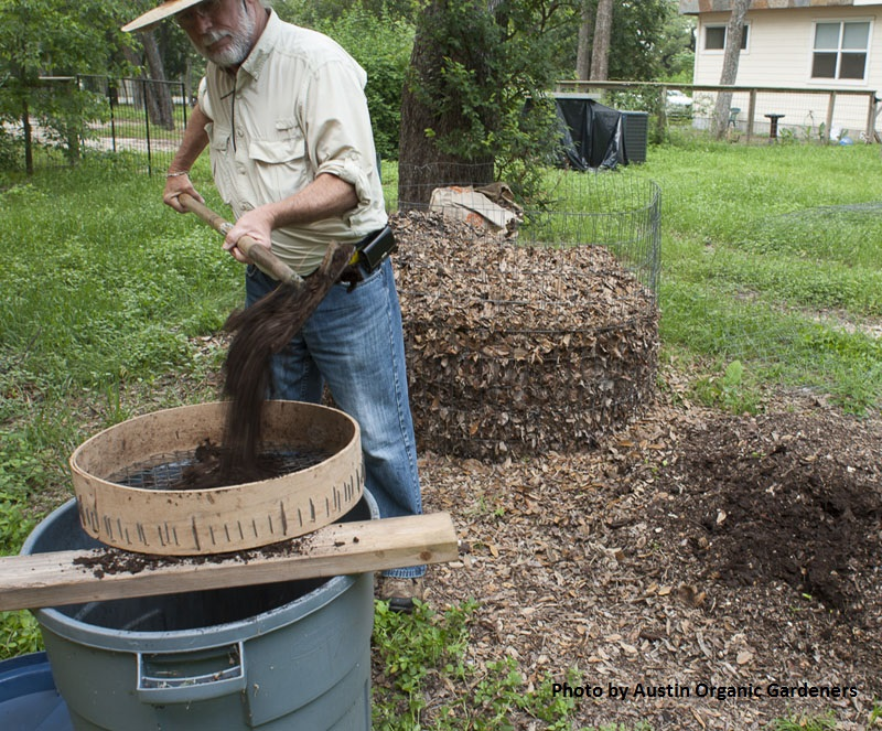 sifting compost Central Texas Gardener