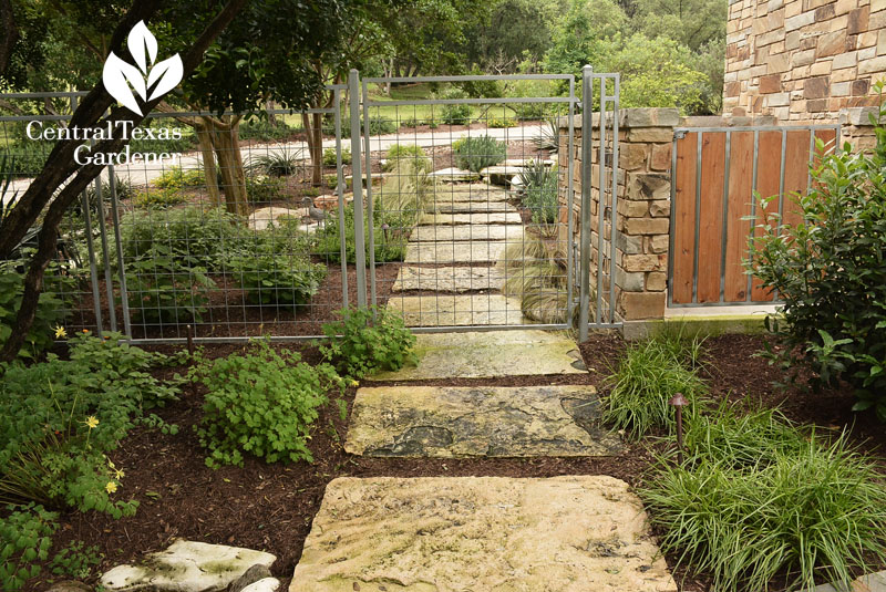 Walkway drainage control Central Texas Gardener