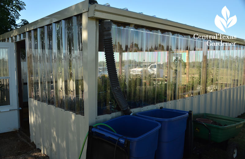greenhouse recycle bins water collection Central Texas Gardener