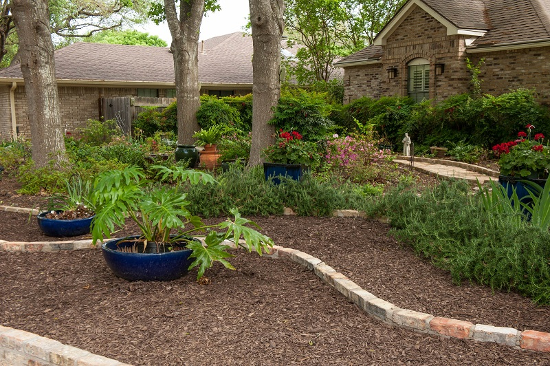 Front yard makeover no grass doris reagan central texas - No grass backyard ideas ...