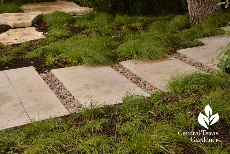 berkeley sedge pavers Central Texas Gardener