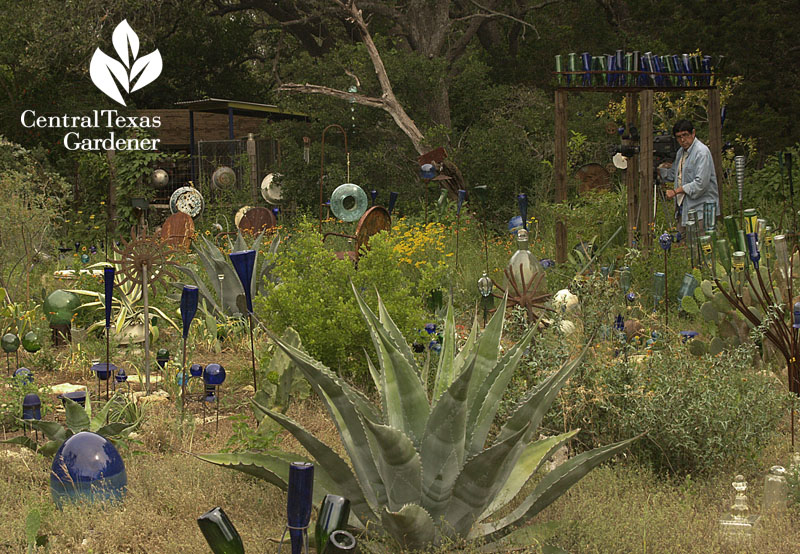 bottle tree world healing garden Central Texas Gardener