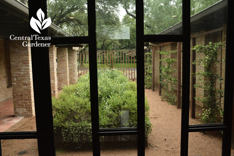 courtyard view from inside Central Texas Gardener