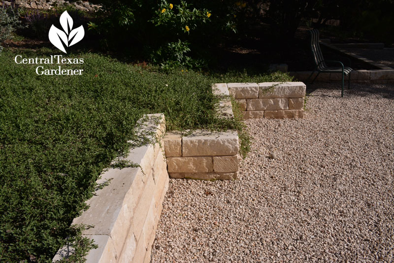 frogfruit limestone raised beds patio Central Texas Gardener