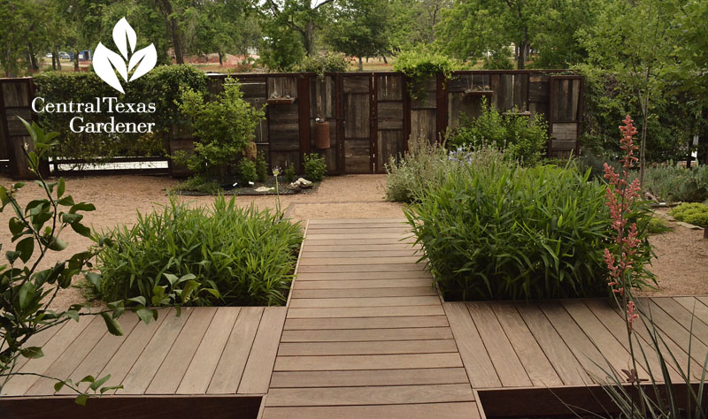 ipe path recycled fence no lawn courtyard Central Texas Gardener