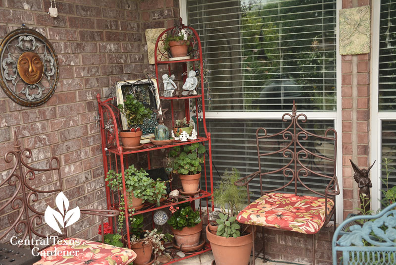 colorful patio Lisa LaPaso design Central Texas Gardener
