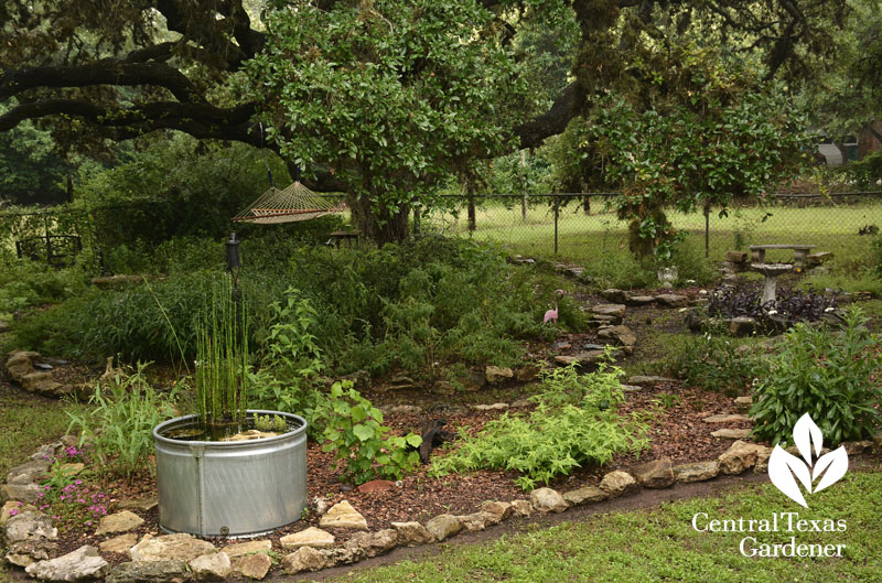 stock tank birdbath habitat backyard Central Texas Gardener