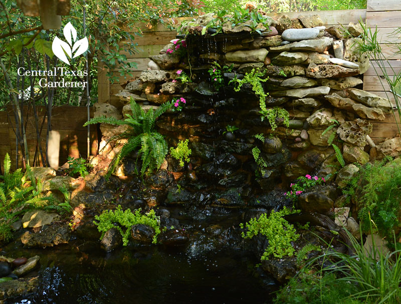 DIY backyard rock waterfall Central Texas Gardener