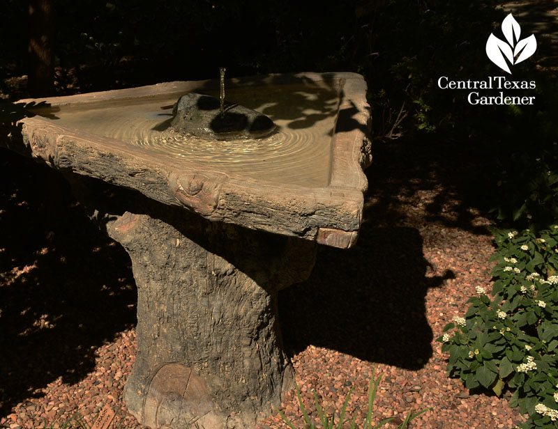 faux bois bird bath fountain Central Texas Gardener