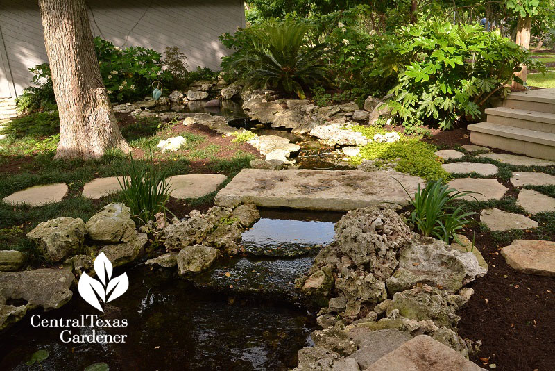 front yard pond and stream Central Texas Gardener