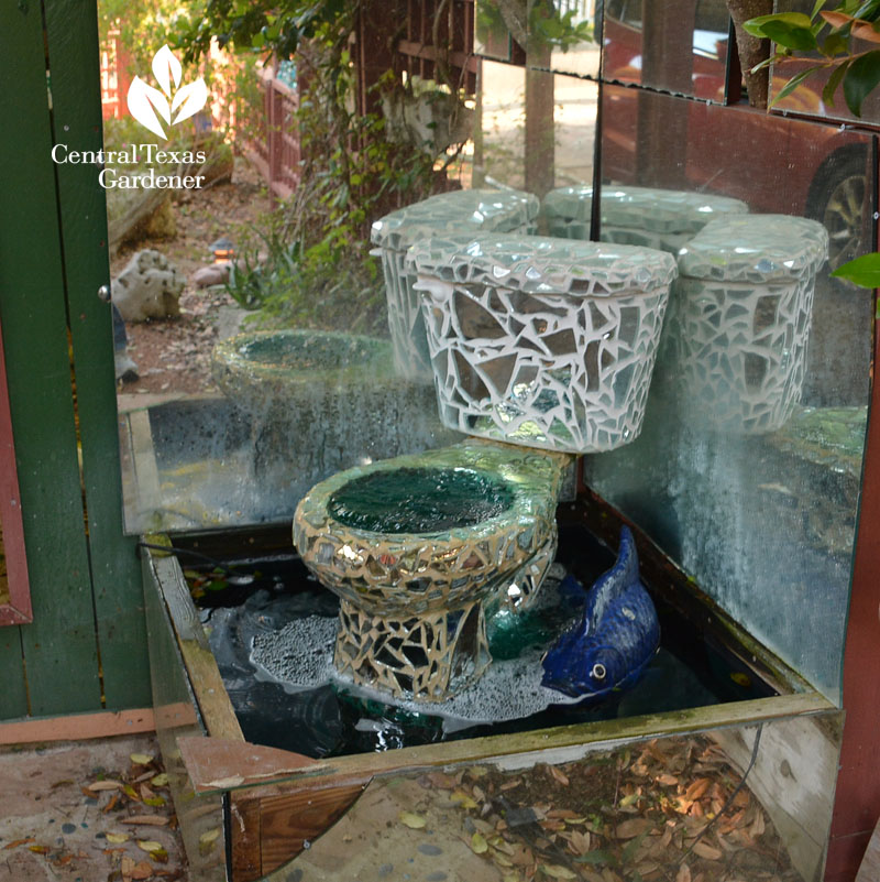 mosaic mirror toilet pond Central Texas Gardener