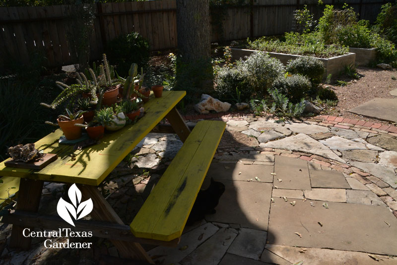 patio mixed stone to concrete raised beds Central Texas Gardener