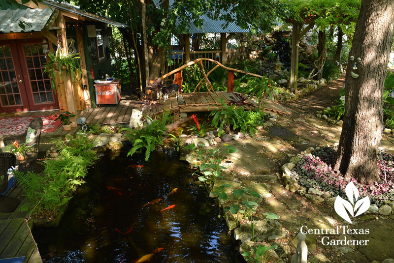 Backyard pond and cedar bridge Central Texas Gardener