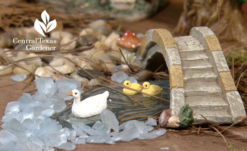 Fairy garden duck pond Central Texas Gardener