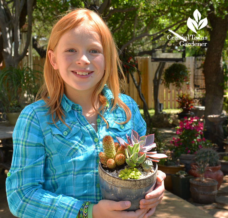 child succulent designer Central Texas Gardener