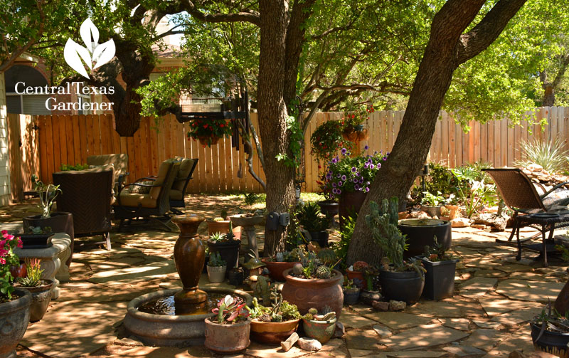 lovely flagstone patio, containers, pond Central Texas Gardener