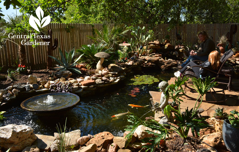 no lawn backyard pond and patio Central Texas Gardener