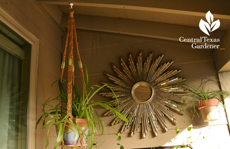 Balcony garden art with gold Central Texas Gardener