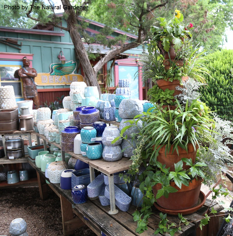 Incredible Plant Stand for porches and patios Central  Texas Gardener