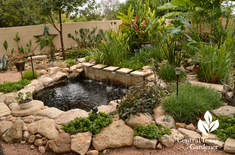 backyard courtyard pond and patio Central Texas Gardener