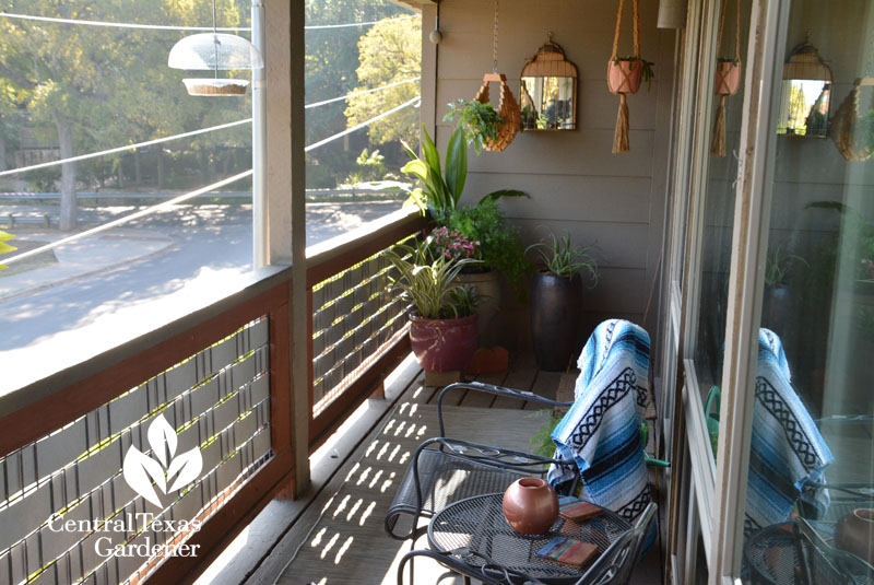 mirrors and containers balcony garden design austin Central Texas Gardener