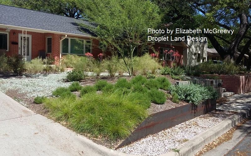 no lawn garden native plants McGreevy design Central Texas Gardener