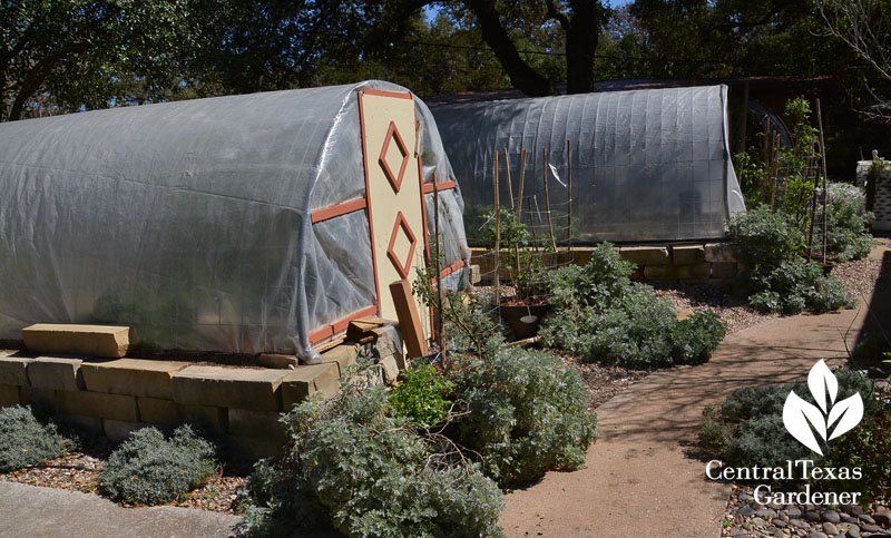 quonset hut vegetable gardens limestone surround Central Texas Gardener