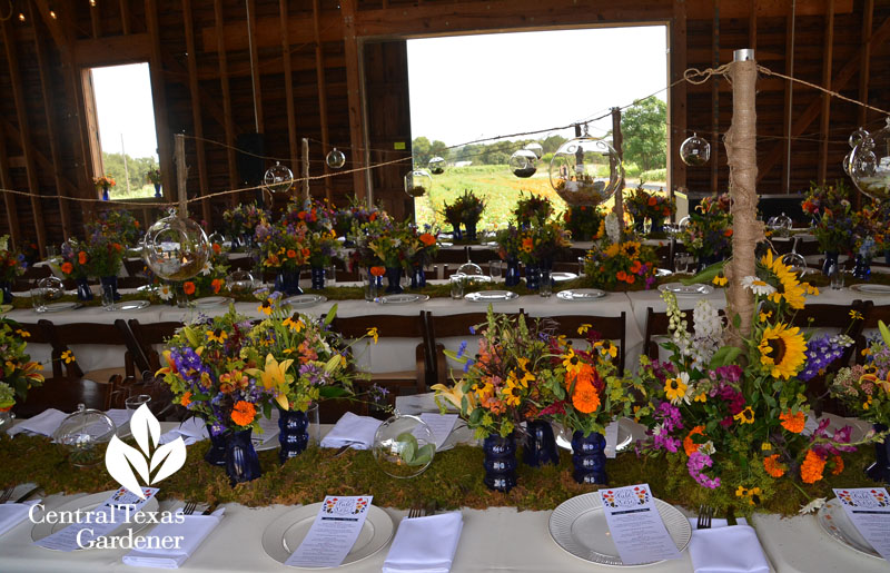 Field to Vase Blanco dinner tour table decorations Central Texas Gardener