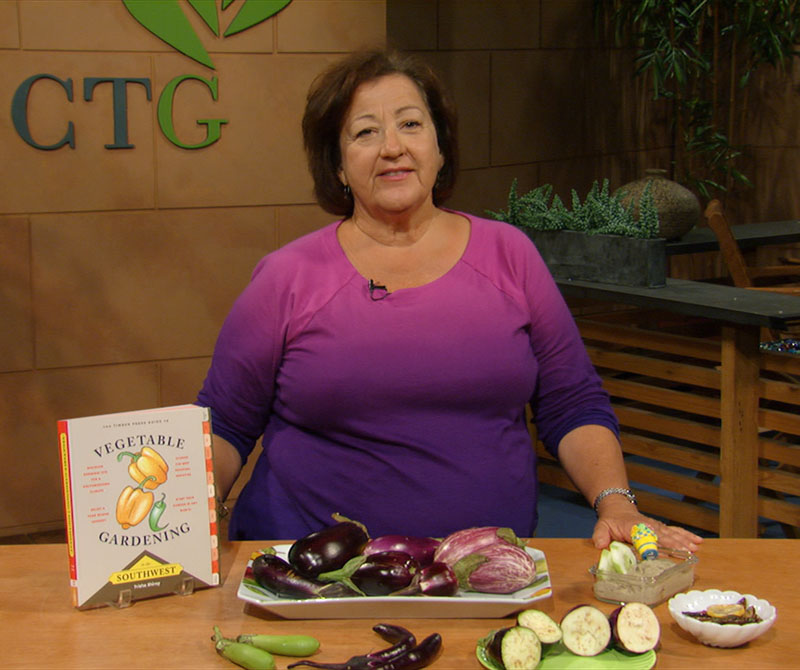 Trisha Shirey eggplant recipes