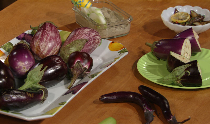 eggplants and recipes
