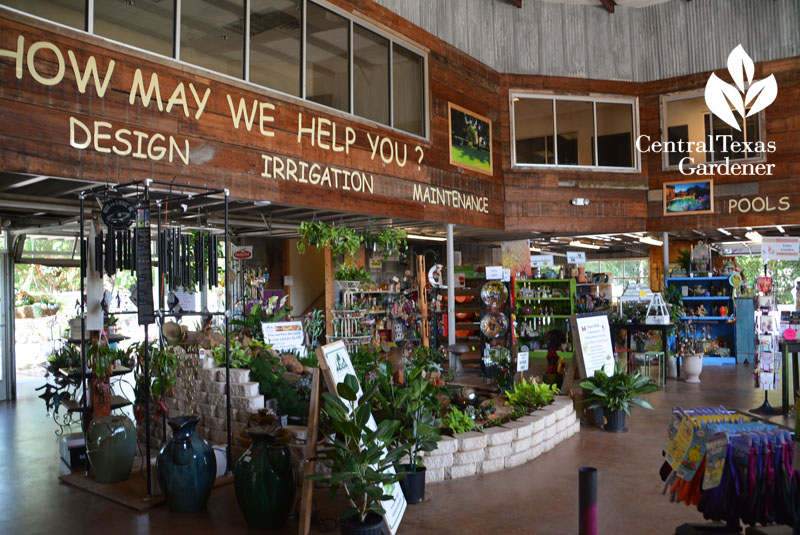 Countryside Nursery Austin Texas Central Gardener
