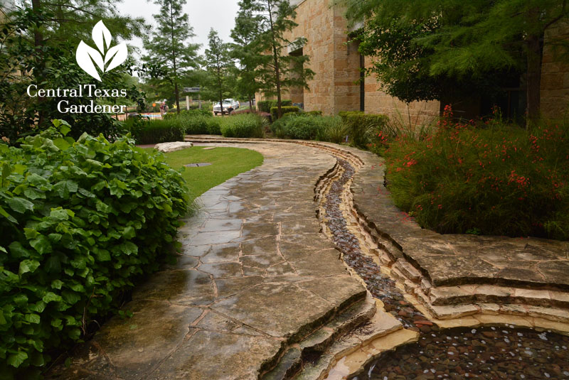 soothing water rill meditative garden Dell Children's Central Texas Gardener