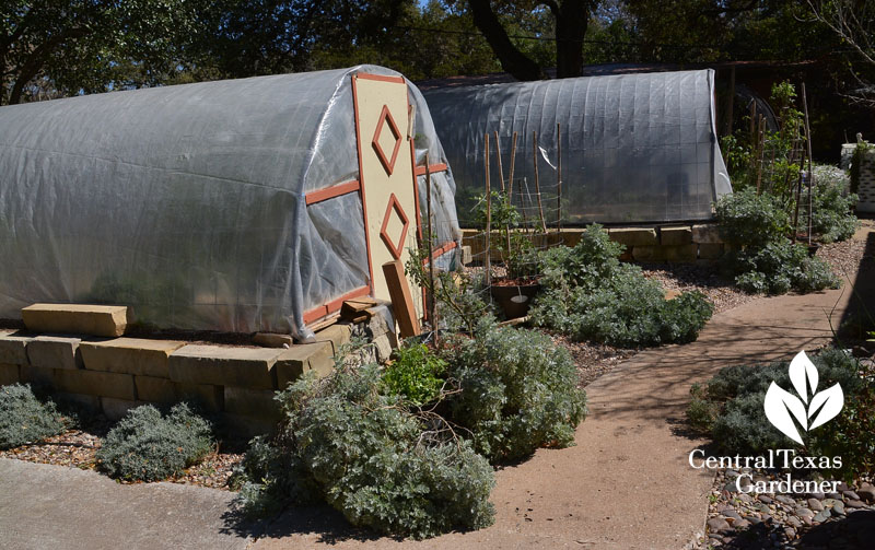 quonset hut homemade greenhouses winter cover Central Texas Gardener