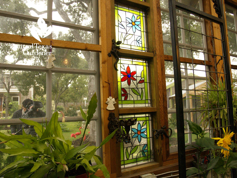 floral stained glass in greenhouse Central Texas Gardener