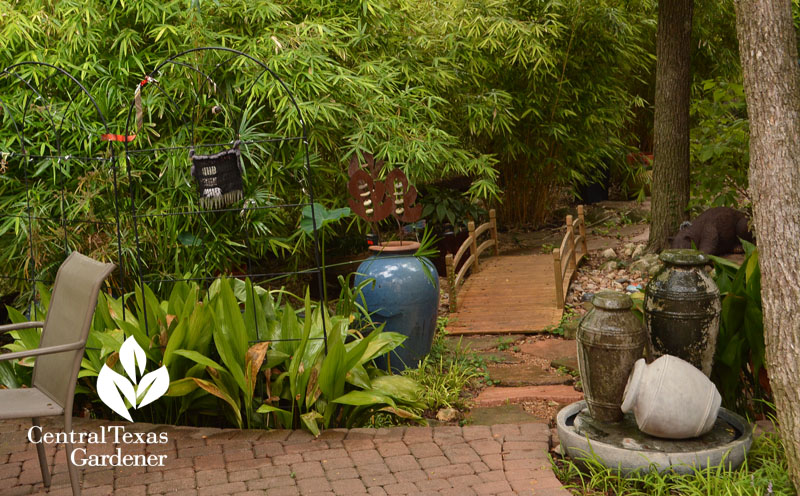 backyard bridge, clumping bamboo, water fountains Central Texas Gardener