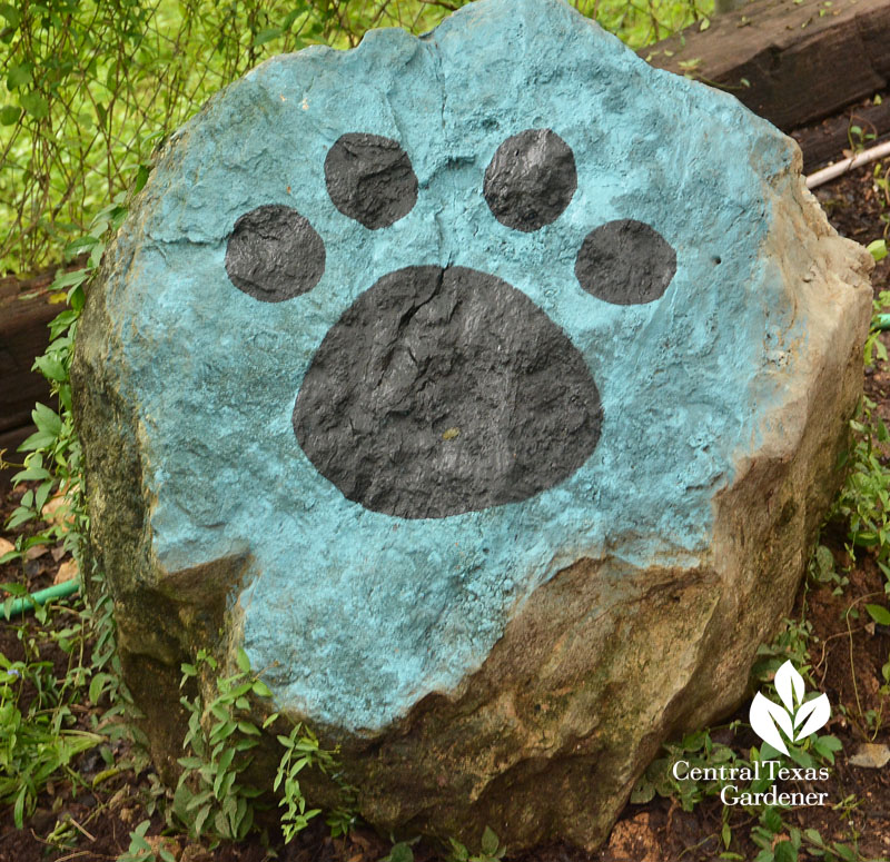 dog paw boulder memorial Central Texas Gardener