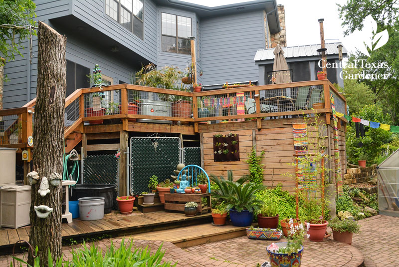 multi-level garden and rain water collection Central Texas Gardener
